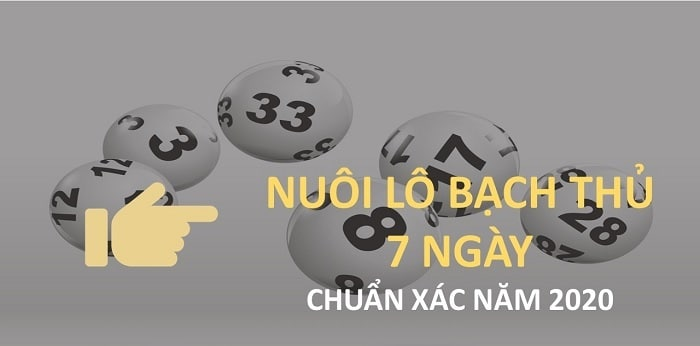 nuoi lo khung 7 ngay